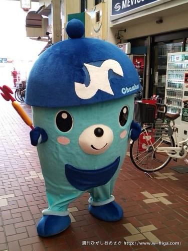 よちよち歩きがかわいい東大阪チェンバーくん