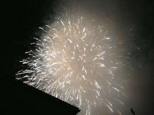 ちなみにこれはふれあい祭りの花火だ!PLの写真がありませんでした!