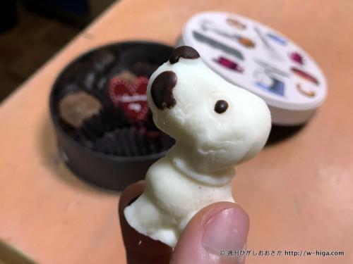 かわいい犬型チョコレート。世間の猫熱などどこ吹く風。