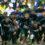 関西屈指のハードコース 枚岡公園クロスカントリー競走大会己を試すランナーたちが集結!