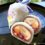 <東大阪スイーツ図鑑 #41>五條堂〜鴻池に咲いた和スイーツ花火〜
